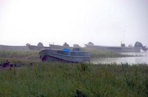 fog and boats near Grayling Alaska